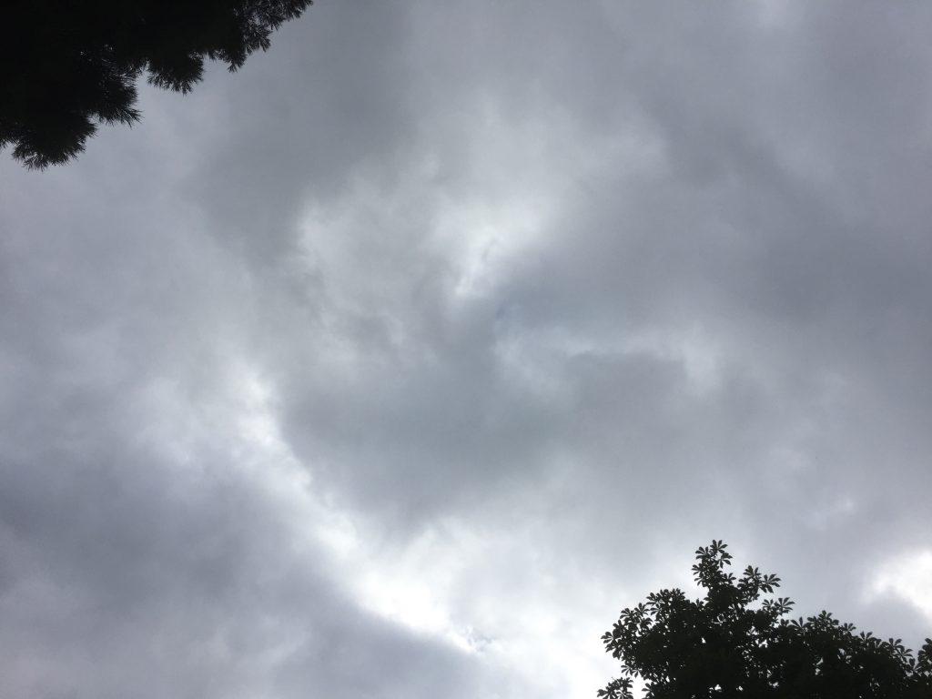 Drohende Schauerwolken am ersten Morgen der Kieler Kinderliederwoche