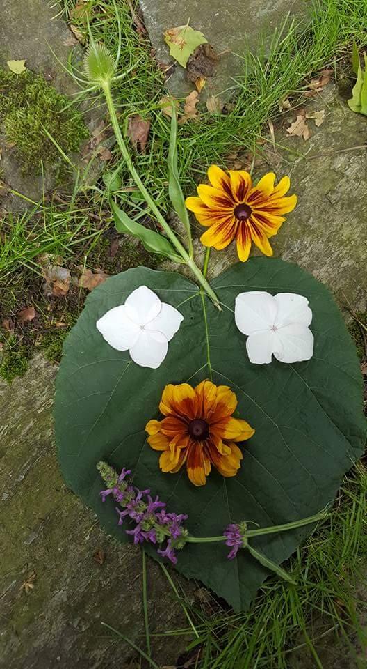 Auch Blumen freuen sich über den Sommer